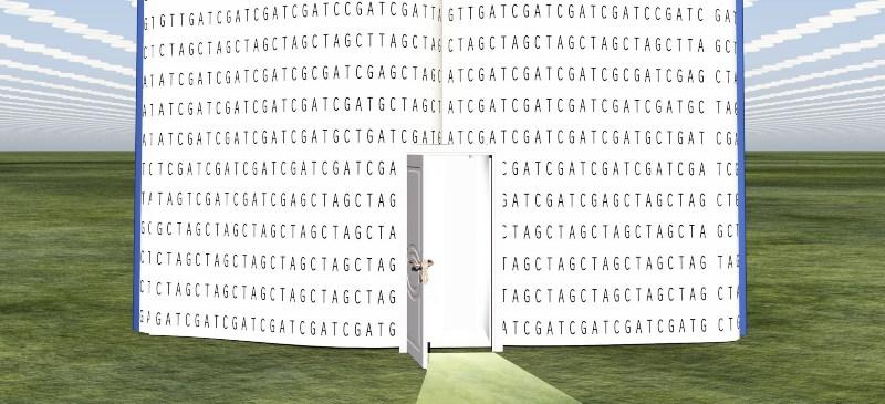 La bioinformática es una apuesta segura. Texto de un libro con código genético sobre un paisaje