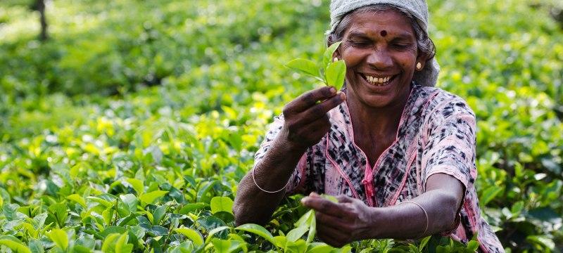 Mujer en el mundo rural
