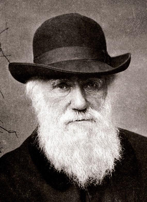 Charles Darwin en 1880. Fuente:Wikipedia.