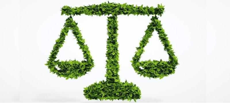 derecho medio ambiente