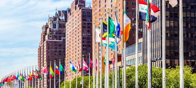Banderas de las naciones miembros de la ONU en Nueva York