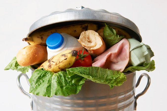 Pon tu granito de arena en la disminución del desperdicio de alimentos