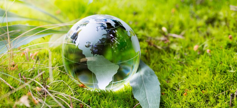 dia mundial del medioambiente. bola de cristal del mundo sobre la hierba