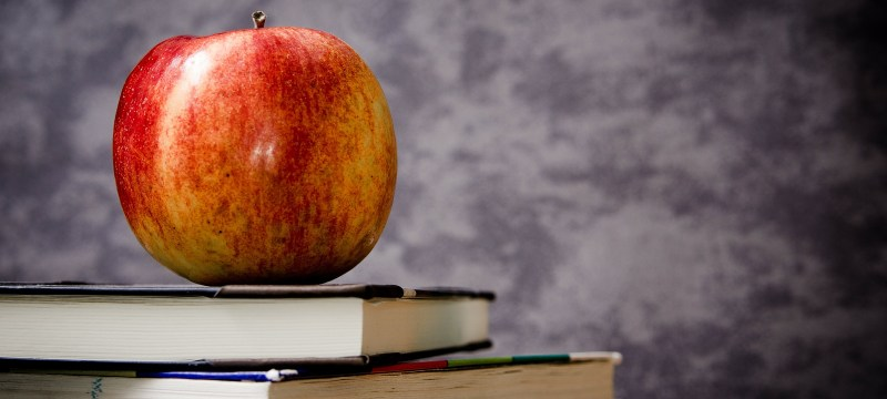 Docentes y aulas: ¿qué observar?, ¿para qué observar?