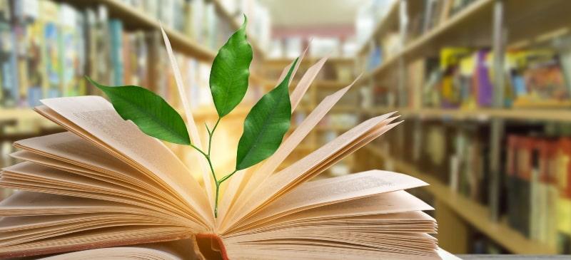 planta que crece en un libro con luz en una biblioteca