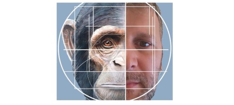 marcos y mono, media cara de cada uno