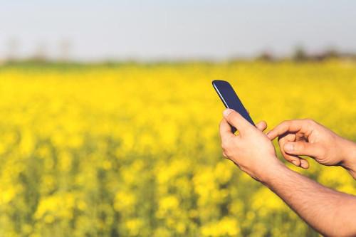'Mobile learning': los nuevos dispositivos móviles facilitan el aprendizaje desde cualquier lugar y momento.