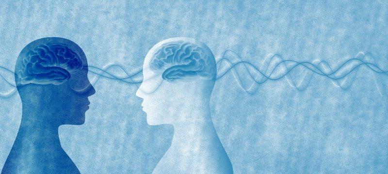neurociencia educacion