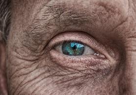 ojo pixabay