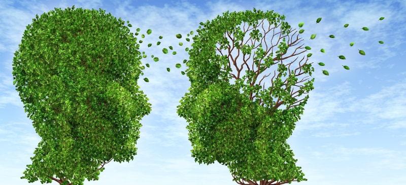 dos imágenes de dos caras hechas con hojas y a una de ellas se le vuelan como símbolo de demencia