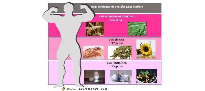Media de alimentación de un hombre de 1.80metros y 90 kilos de peso
