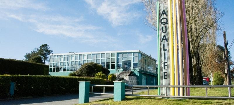 Los alumnos de la Universidad Isabel I podrán realizar prácticas en el centro deportivo Acqualife