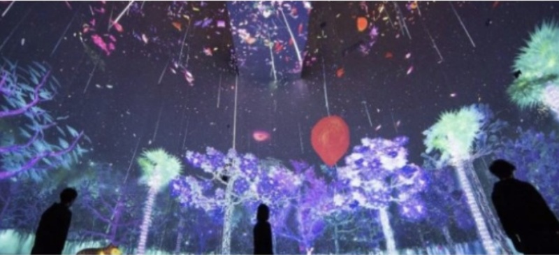 Imagen del Museo Reina Sofía que mezcla arte y ciencia