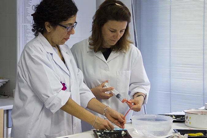 Alumnos de toda España acuden en Burgos a las prácticas presenciales del Grado en Nutrición de la Universidad Isabel I