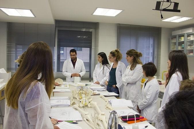 La Universidad Isabel I lanza una primera oferta de empleo para doctores acreditados y tutores online para trabajos de fin de grado y máster
