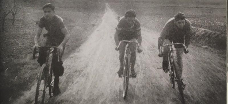 Tres ciclistas en los campos de la rioja entre viñedos